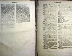 Alfonso de Palencia publicó un diccionario anterior al de Nebrija